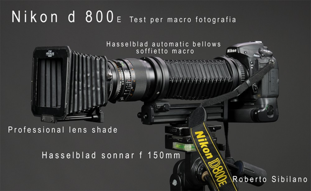 custon-nikon-d800e-di-roberto-sibilano-per-macro-fotografia